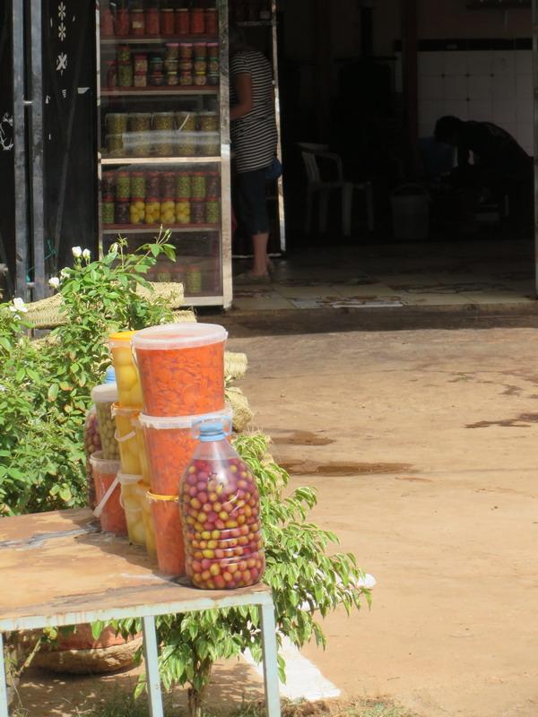 op weg naar  Khenifra (olijven en olijfolie gekocht - vandaag geperst!)